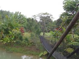 Tubing safari: A swaying bridge across the White River , Tyanne A - April 2011