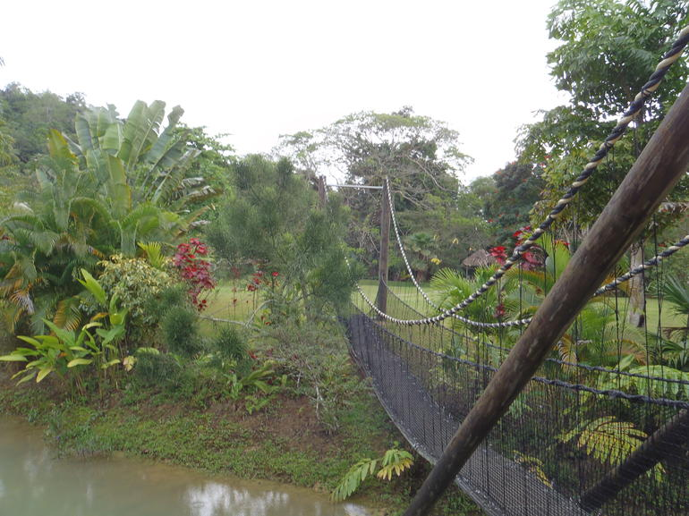 Jungle River tubing safari - Montego Bay