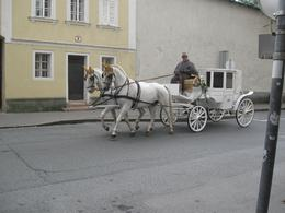 one of many carriages in town, Denis S - October 2010
