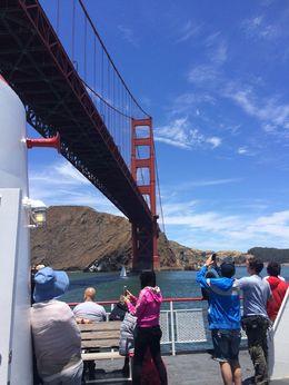 Cruising the Bay , tavant - June 2016