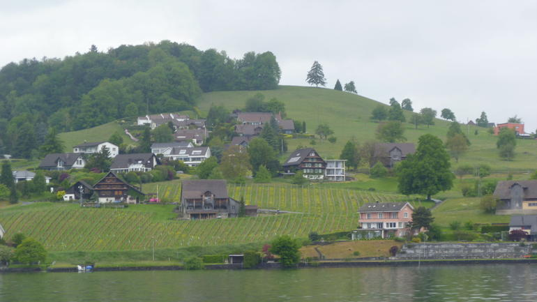 A pastoral scene from the lake - Lucerne