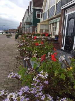 The tiny fishing village of Volendam , Lisa F - September 2015