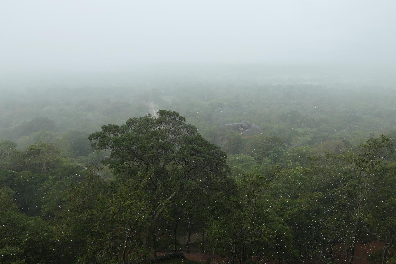 MÁS FOTOS, Sigiriya Rock and Dambulla Cave Temple all inclusive Private Day Trip