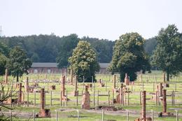 I went on a trip to Auschwitz in August this year (on my birthday!). Looking at pictures and watching films gives you no idea of the enormity of it all. Not my happiest birthday but one which I'll... - October 2008