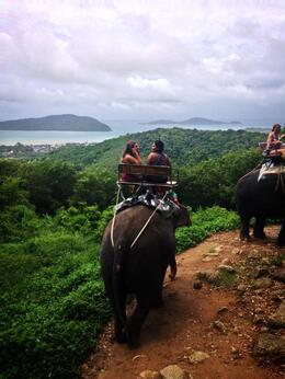 Great view during the elephant ride! , Czarina - July 2014