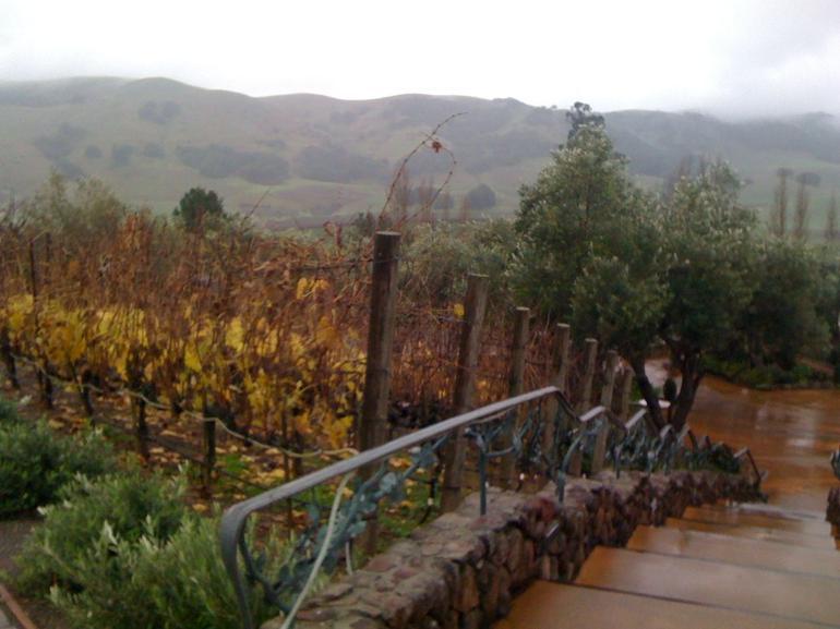 Beautiful Wine Region! - San Francisco