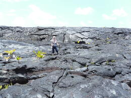 Volcano on the Big Island: The sheer scale of the lava flows is breathtaking , PATRICIA C - June 2011