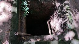 Tunnel entrance from the war. , Michael K - December 2015