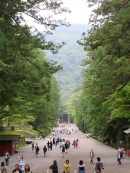 This is the walk up to Toshogu Shrine. , wazelle62 - December 2014