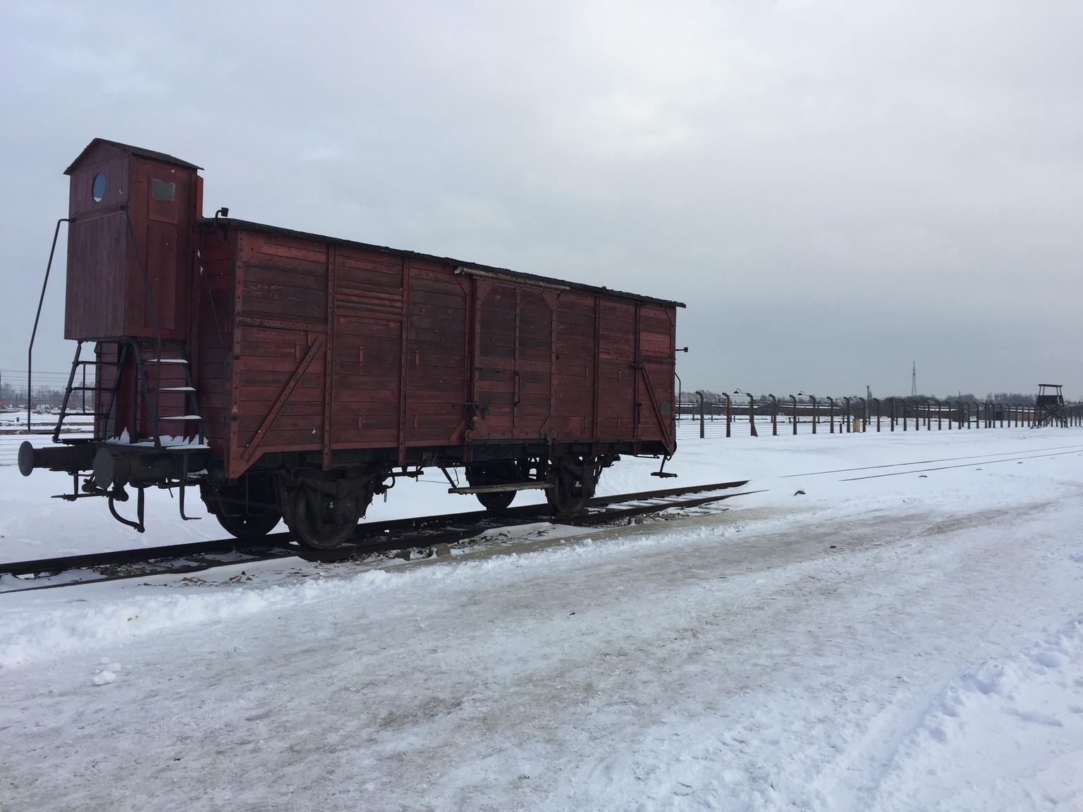 MÁS FOTOS, Excursión de medio día al Museo de Auschwitz-Birkenau desde Cracovia