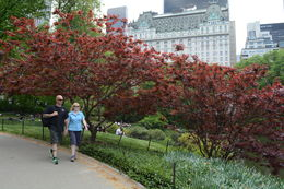 Reece and Andrea on a beautiful NYC spring day , andyreece - August 2015