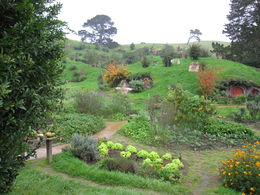 Beautiful Hobbiton , JENNIFER K - June 2015