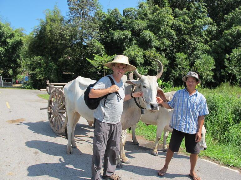 Dave and Driver - Bangkok