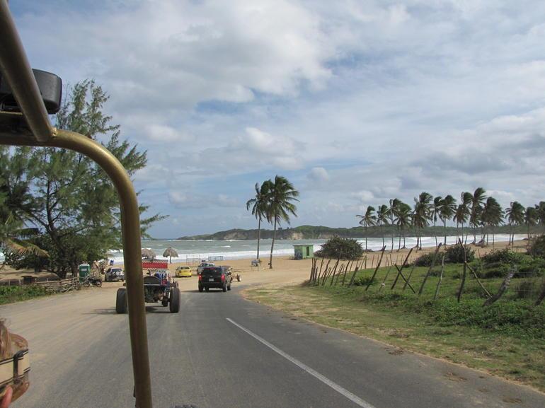 IMG_3599 - Punta Cana