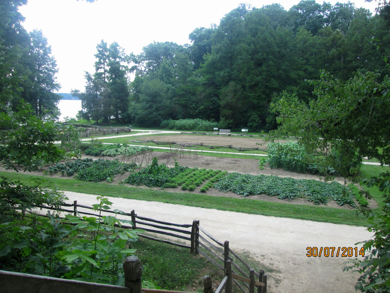 Mount Vernon vegitable / seed beds