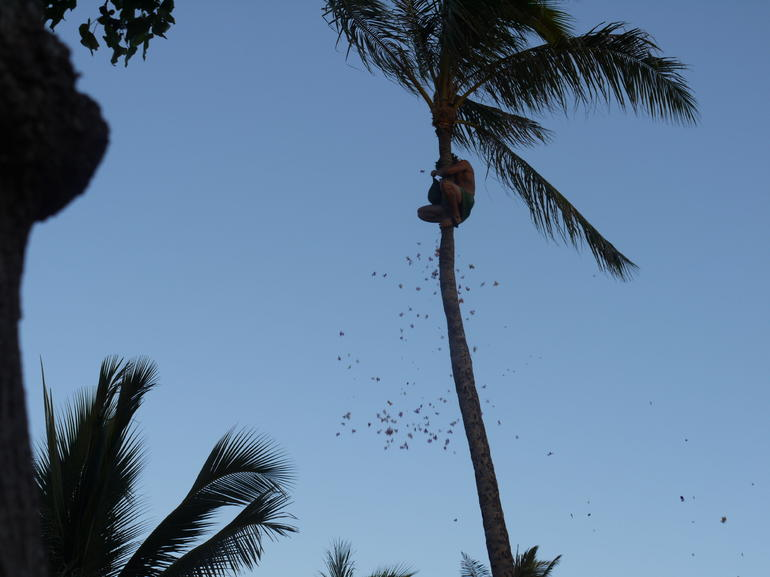 Paradise Cove - Oahu