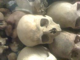 Skulls inside the Cathedral!, Bandit - June 2012
