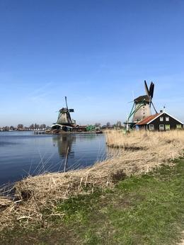 Zaanse Schans Windmills , Brianna S - April 2017