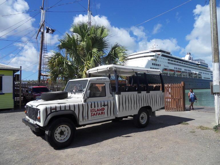 Island Safari 4x4 Discovery Tour from St John's
