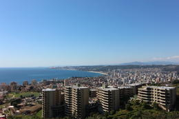 Overlooking Vina del Mar., Bandit - October 2013
