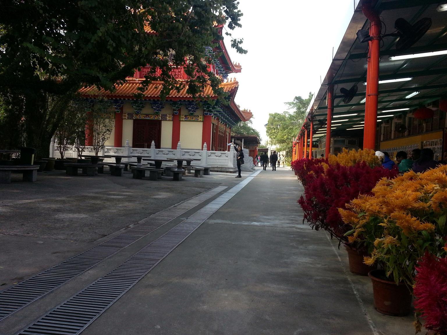 MÁS FOTOS, Full-Day Private Tour of Lantau Island including Big Buddha and Tai O