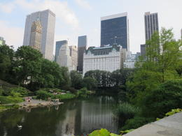 Walking in Central Park , tcotterman - July 2014