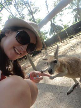 Me and a gorgeous wallaby taking selfies at Rainforest Habitat Wildlife Sanctuary!! , Zoe K - December 2013