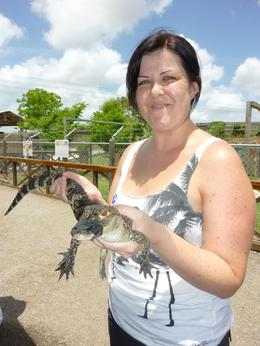 While at the Everglades you get the opportunity to hold a baby alligator, here is my very brave friend., Dannielle G - June 2010