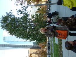 Incredible experience. , Phyllis F - November 2011