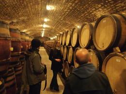 Touring the wine cellar of Moillard winery, Rachel - November 2013