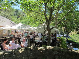 The relaxing shady tea garden at Rhodes Memorial, Nick - March 2012