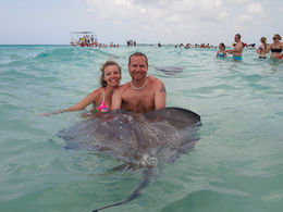 Professional photo of my husband and I holding a large stingray at Singray Sandbar! , Shawn W - June 2015