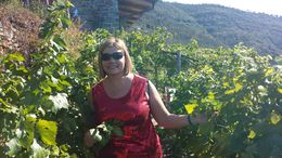 In the vineyard. In Cinque Terre , Dawn G - September 2015