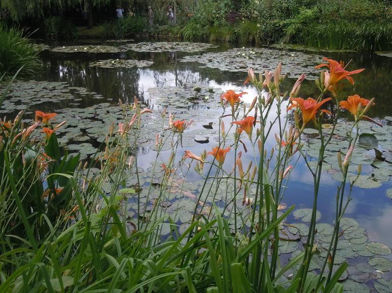 Water Garden - Paris