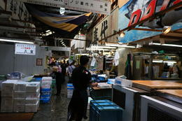 In the Tsukiji fish market , s.hirsh - June 2017