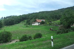 Scenery at the Black Forest taken during Black Forest and Strasbourg Day Trip from Frankfurt. , Mario S - July 2014