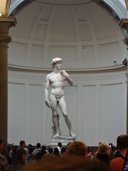 Michaelangelo's David - carved out of one piece of marble - when Michaelangelo was in his 20's!! To be able to see the immense size and be able to walk all around him was unbelievable! , Terry P - July 2016