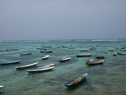 The villagers extract seaweed from this area of Lembongan Island for exporting. , Jenny G - February 2011