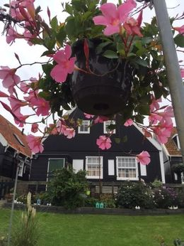 Beautiful homes on Marken , Lisa F - September 2015