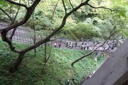 behind Kiyomizu Temple , Vega R - November 2016