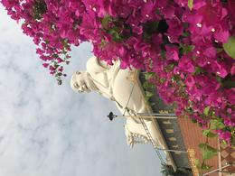 buddhas smiling at us on the way to lunch , Danielle W - March 2017