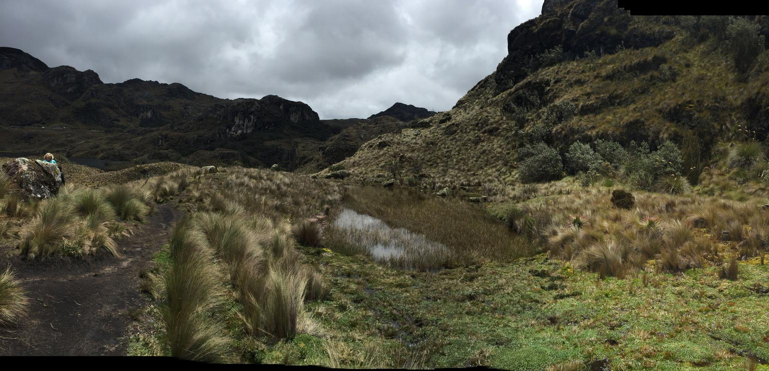 MAIS FOTOS, Full-Day Cajas National Park Tour with Small-Group