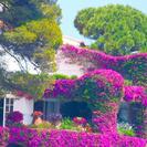 Viagem de dia inteiro por Costa Brava saindo de Barcelona, Barcelona, Espanha
