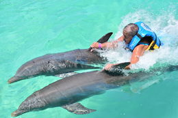 Two dolphin pull for Suzanne. Look at the smile on my face. , Suzanne L - May 2015