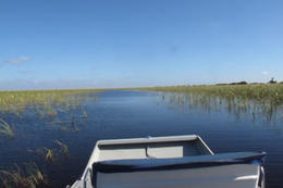 Taking the airboat out! - January 2012