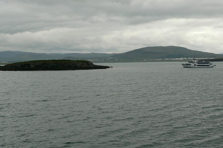 Puffin Island - Reykjavik