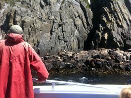 David @ Friars Rocks Bruny Island , DavId W - February 2014