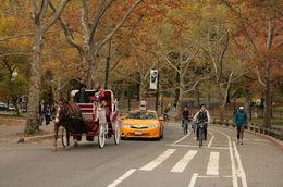 Petite balade à vélo au lendemain du marathon de New-York en novembre 2015. Excellent pour la récupération. , philippe B - November 2015