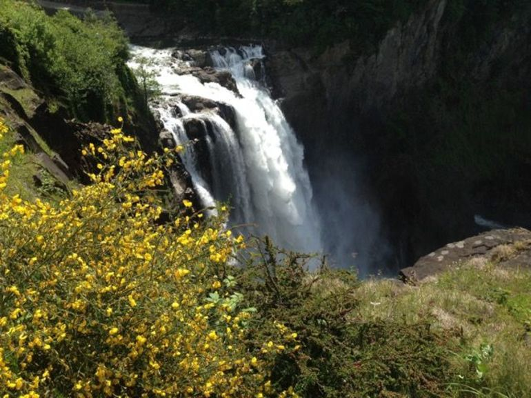 Snoqualmie Falls and Seattle Winery Tour photo 31
