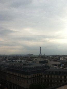 Evening photo of Paris from a rooftop. , Laura L - August 2011